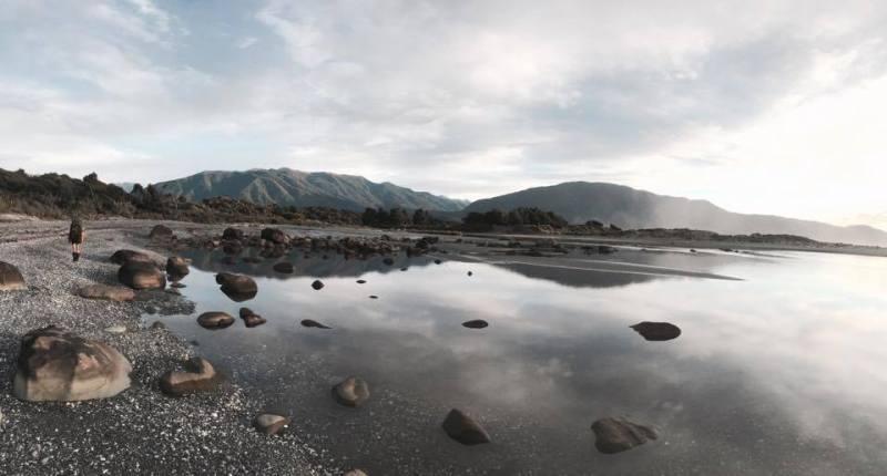 Fiordland trip with astranger