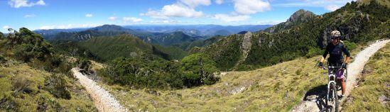 NZ Jan 2016-8681-2